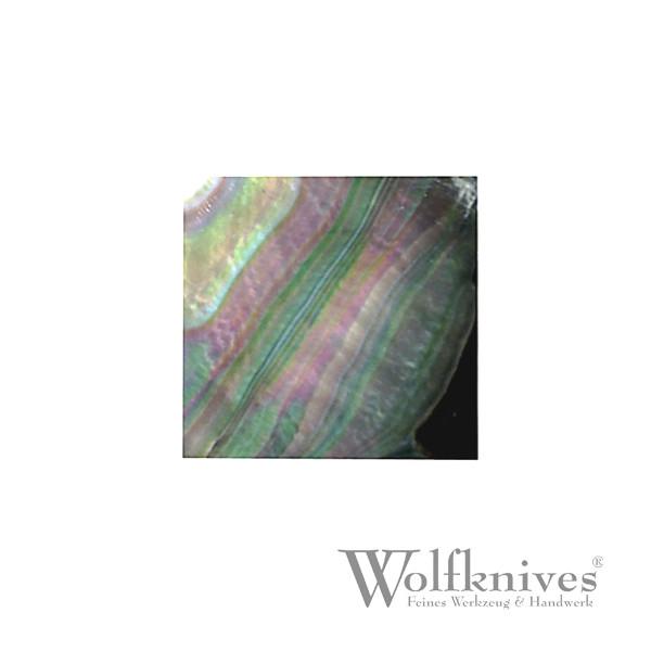 Abalone Perlmutt Quadrate - 30 x 30 mm - 1 Stück