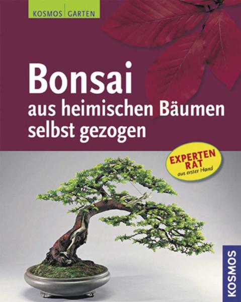 Bonsai aus heimischen Bäumen selbst gezogen - Taschenbuch