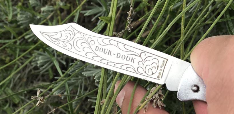Kat_Douk-Douk2