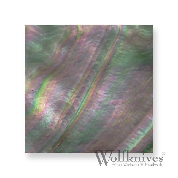 Abalone Perlmutt Quadrate - 40 x 40 mm - 1 Stück
